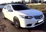 Аренда Honda Accord NEW белая авто бизнес класса Киев цена