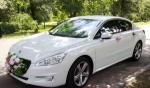 Аренда Peugeot GT-508 белый авто бизнес класса Киев цена