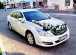 Аренда Nissan Teana белая авто бизнес класса Киев цена
