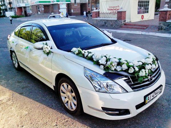 Nissan Teana белая аренда авто киев