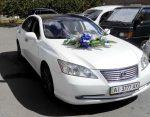 Аренда Lexus ES350 белый авто бизнес класса Киев цена