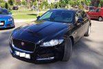 Аренда Jaguar XF черный авто бизнес класса Киев цена