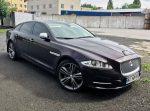 Аренда Jaguar XGL бордовый авто бизнес класса