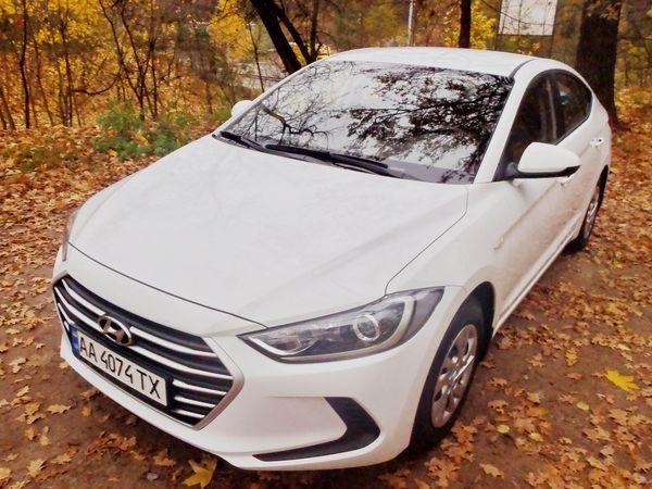 Hyundai Elantra белая на свадьбу в киеве