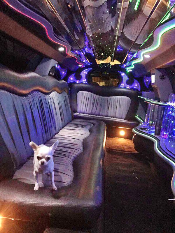 Chrysler 300C аренда лимузина на свадьбу в киеве